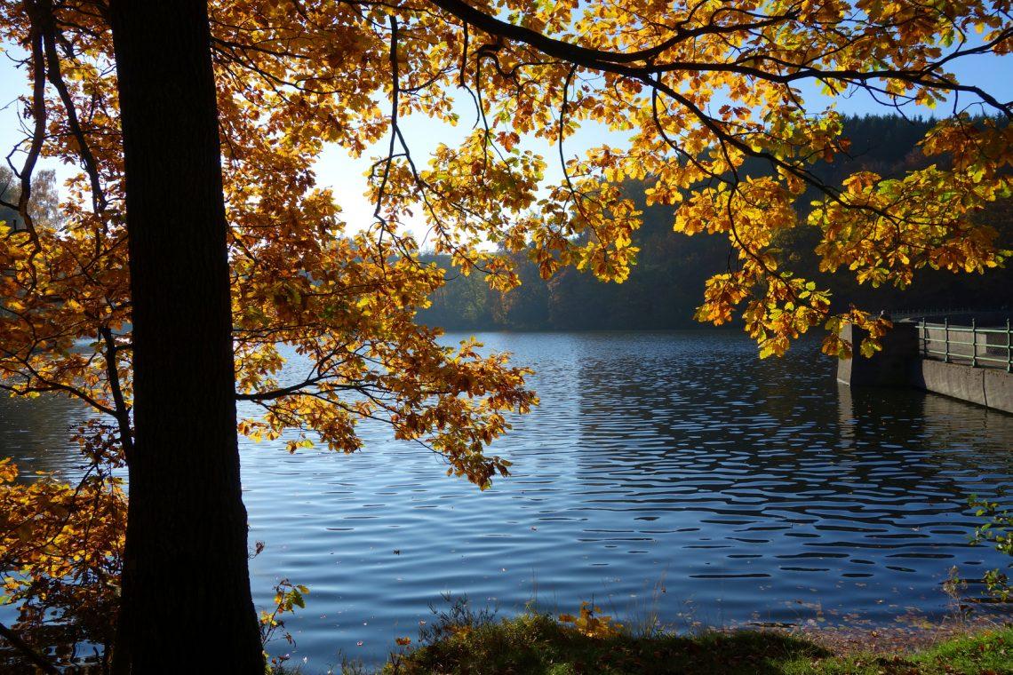 Die Heilenbecker Talsperre im Herbst